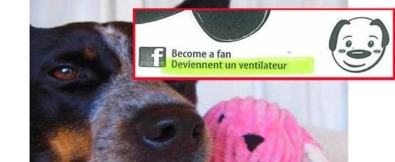 deviennent un ventilateur