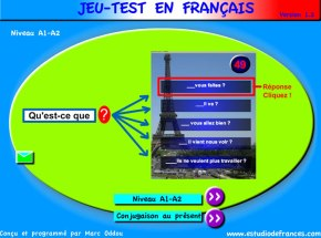 Test Your French!